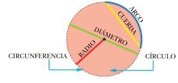 Resultado de imagen de circunferencia y circulo